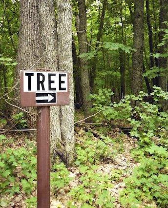 sign2tree